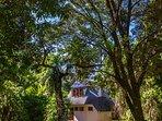 House set on five acres of rainforest