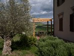 TUSCANY FOREVER RESIDENCE VILLA FAMIGLIA No.2 ground floor apartment 3 bedrooms/2 bathrooms