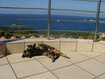 villa-appartements, vue panoramique, mer, forteresse, village. piscine