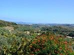 nature and view around the villa