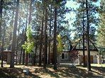 Family 'Bearadise' - 3/4 Acre of Fun in Big Bear Lake, California