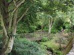 Coldingham village nature walk