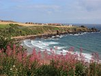 10 minute walk to Coldingham Bay beach