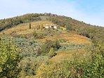 Amazing villa to watch the four seasons change