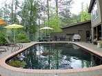 The pool and patio