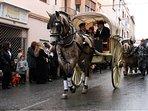 Horse festival at Miravet