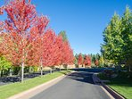 Pine Canyon  Entrance Road