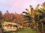 eco-cottage rainbow!