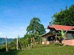 Beautiful and peaceful place in the heart of Rural Costa Rica