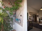 Green plants to bring freshness to the balcony.