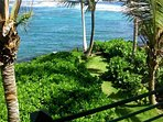 This is your back yard and trail to your own ocean access on Kapoho Bay!
