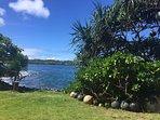 Lovely backyard of Hokulani Kai, Kapoho, Hawaii