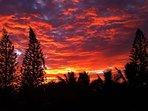 You will experience magnificent sunrises while staying at Hokulani Kai, Kapoho, Hawaii