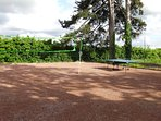 Terrain de jeux (badminton, tennis de table, volley...)