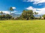 Lush Tropical Landscape