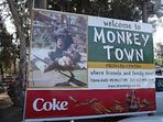 Monkey Town only 10 minutes away by car