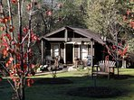 Mountain Retreat! Lover's Cabin at Yosemite Dreams! Come Enjoy the Off Season Rates and beauty!