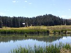 PIKES PEAK RETREAT IS LOCATED IN PIKE NATIONAL FOREST