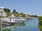 Docks for rent $250 per week