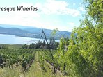 Many picturesque wineries with wine picnics quaint bistros and restaurants nearby