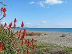 View along beach near villa
