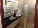 Master En Suite - Separate Tub on Right and Walk-in Shower Left Beyond Glass Wall - Granite Counter