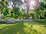 Beautiful garden view