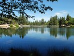 Sparkling Green Valley Lake