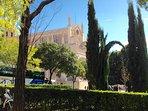 Vista de los Jeronimos desde el jardín del Prado.