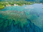 Aerial View of our coral reef and the beach in front of our house
