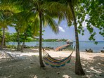 White sand beach, palm trees and a hammock...  We got that!