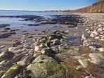 Rock pooling and searching for fossils along the heritage coast,.