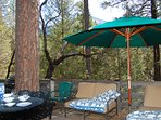 Back deck with all new deck furniture, gas grill and view of Wawona Dome