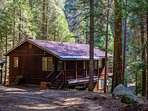 Surrounded by lots of trees! Peaceful location, no traffic, no crowds.  Kids free to explore the woods with no...