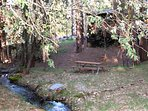 Our private picnic table by the seasonal stream found behind the back deck.