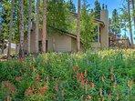 Summer wildflowers surround the five bedroom Golden Chalet in Breckenridge!