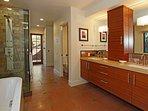 Luxurious spa-like Master Bathroom & patio outside