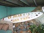 Surf's Up at La Jolla Caribe!