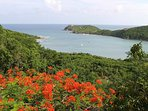 Overlooking Fish Bay on the South Shore of St. John
