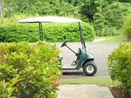 Seafore provides its guests with two 4-person golf carts.