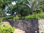 Welcome to Wooldands Estate's tropical grounds!