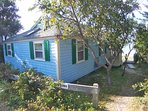 Truly a classic Cape beach cottage, nestled in the dunes.  That bump-out behind the tree is the enclosed outdoor...