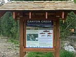 Sign of the different habitat that run through Canyon Creek.