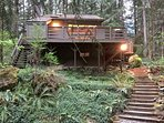 26SL Woodsy Cabin near Mt. Baker with a  Hot Tub
