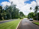 the road to turtle bay