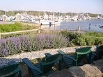 Enjoy a cocktail on the outdoor Patio at Brax Landing less then a mile from the house! - South Harwich Cape Cod New...