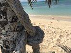 Dead End Beach