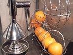Oranges offertes pour bien démarrer la journée avec un bon jus frais