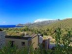 Exquisite Elba #11203.1
