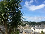 Palm trees from the Serpentine looking down to Rothesay.